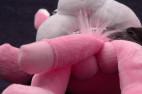 Plyšový zajac Naughty Bunny