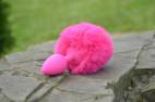 Análny kolík Pinky Bunny - v prírode